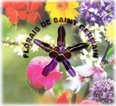 Saint Germain – Free Lecture & Workshop – Land of Reiki & Aroma