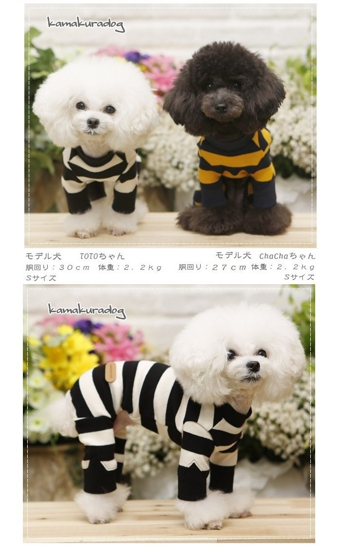 楽天市場 犬の服 しましまつなぎ 鎌倉dog2号店 犬の服 犬 ペット服