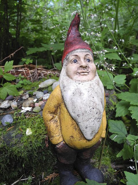 Gnome In Garden: 1000+ Images About Gnomes On Pinterest