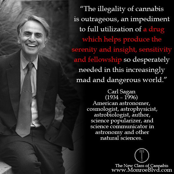 """The illegality of cannabis is outrageous, an impediment to full utilization of a drug which helps produce the serenity and insight, sensitivity and fellowship"