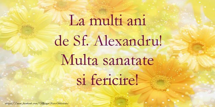 La multi ani de Sf. Alexandru! Multa sanatate si fericire!