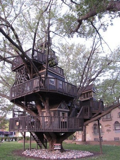 Most awesome tree house ever!!Trees Forts, Tree Houses, Dreams House, Treehouse, Children, Places, Kids, Amazing Trees House, Backyards