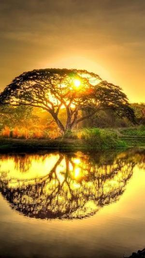 Magical sunrise by cmyk