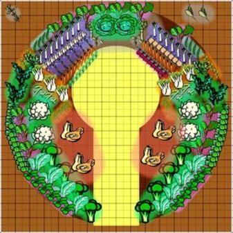 Индийская грядка-мандала – секреты кругового огорода