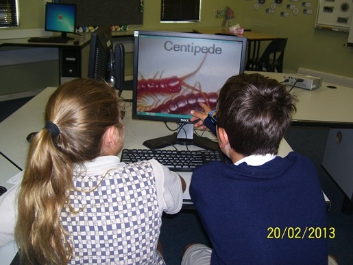 As part of their Integrated Learning Tasks, Grade 5 pupils watched a photo story presentation in pairs.  The photo story showed them soil creatures which were supposedly found in Mr Raven's garden.  They had to draw up a tally table of the number of soil creatures of various kinds which they could count.  They reflected their results on a bar graph and pictograph.