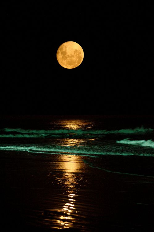 .beautiful full moon over the sea