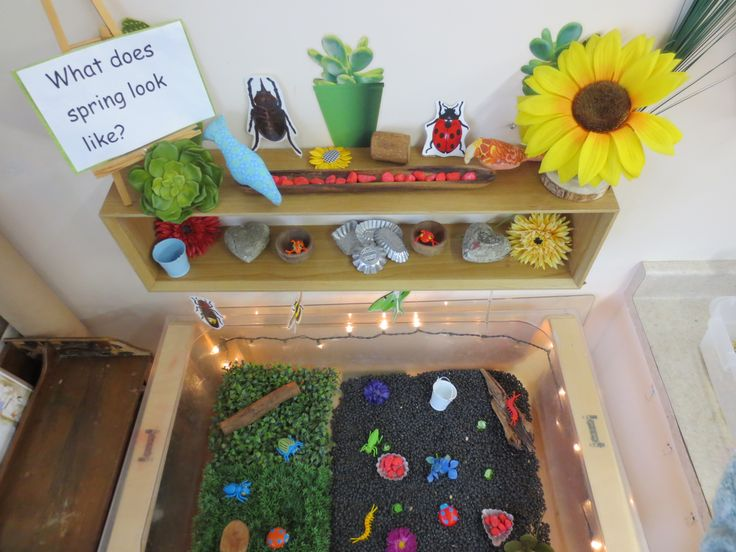 Sensory bin with black beans, bugs, sticks, logs, flowers, and stones. Add scoops and small pails for pouring.