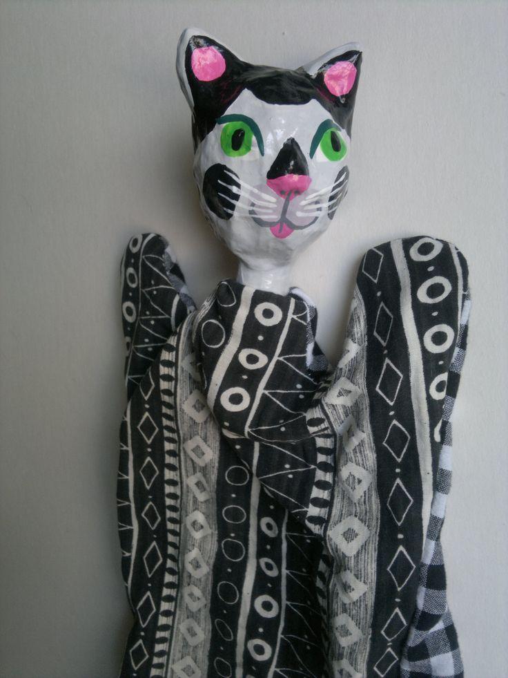 kočka, cat