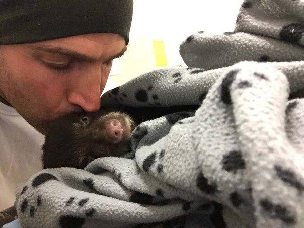 Этот человек рисковал попасть в тюрьму, спасая маленького медвежонка, на которого случайно наткнулся во время своей прогулки.