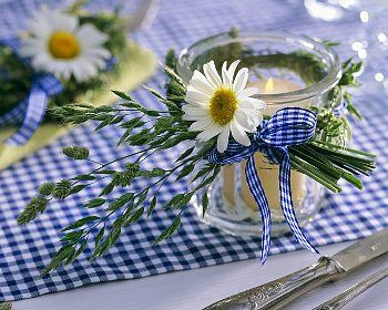 daisies and blue and white gingham are such a cheerful combination for an outdoor luncheon or informal dinner
