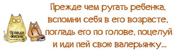Это главный жизненный принцип. Дети, когда вырастут, будут вам благодарны... Юмор, цитаты, ...
