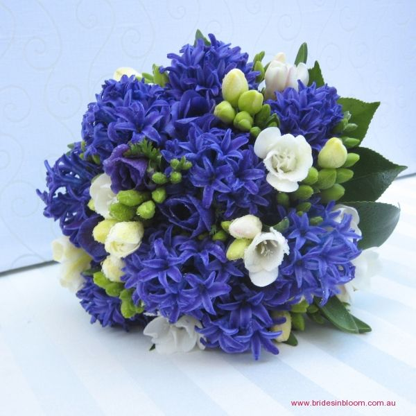 Blue Bouquet!