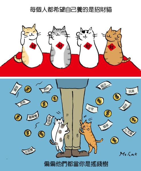 〈寵物狂想曲〉招財貓還是搖錢樹 - 貓小姐的光陰筆記 - udn部落格