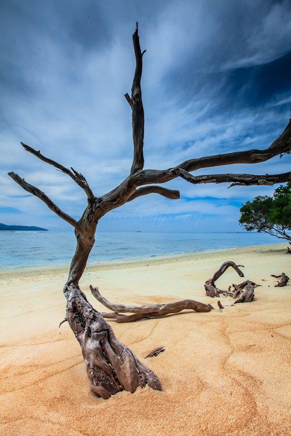 A Hidden Paradise at Gili Trawangan, Lombok, West Nusa, Tenggara, Indonesia - Rose Kampoong
