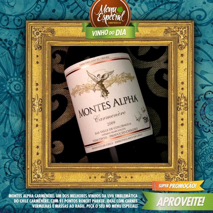 Montes Alpha Carménère – Um dos melhores vinhos da uva emblemática do Chile Carménère. Com 91 pontos Robert Parker. Ideal com carnes vermelhas e massas ao ragu.