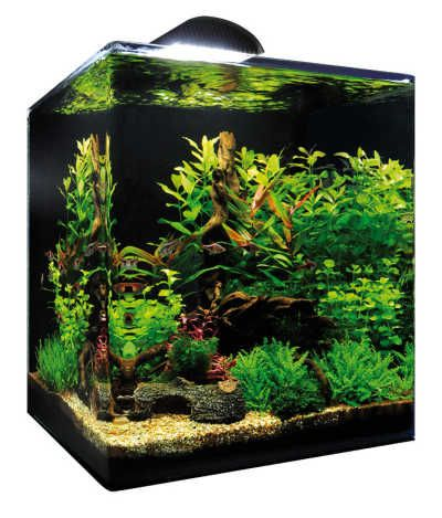 nano cube 60l akwarium goed nano aquarium aquarium. Black Bedroom Furniture Sets. Home Design Ideas