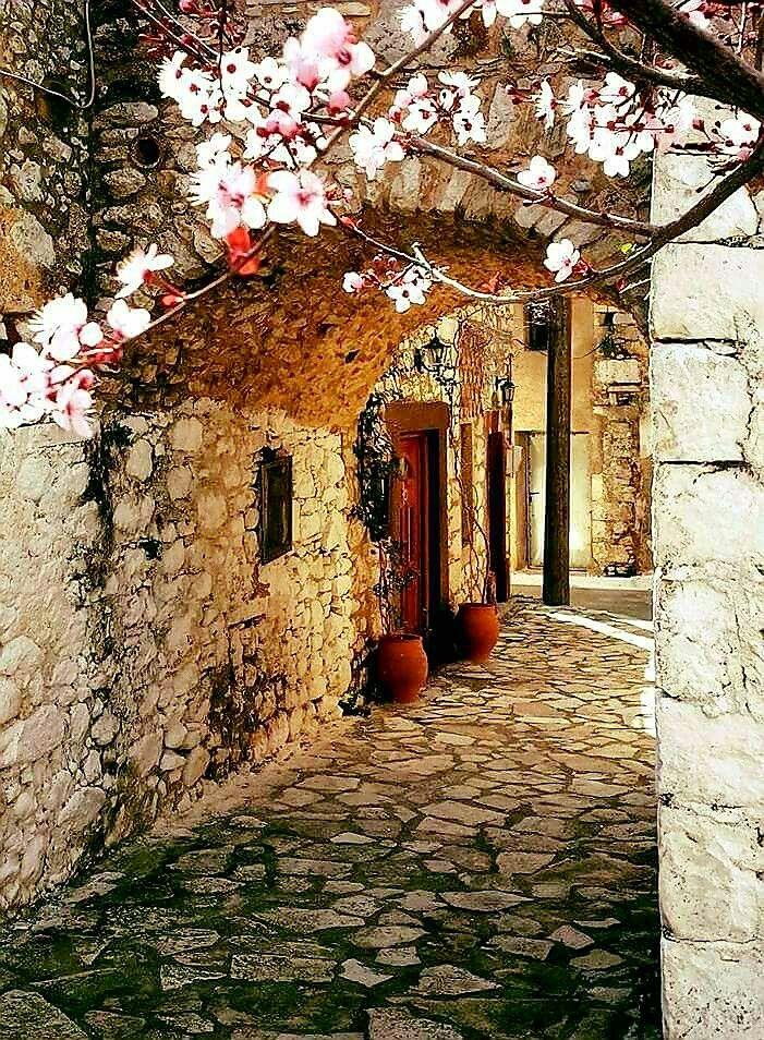 Chios Armolia