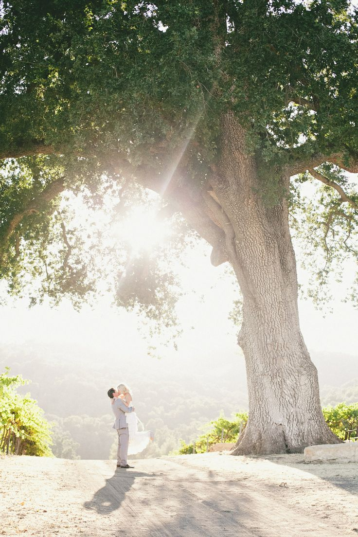 A picture perfect moment during a breathtaking vineyard wedding.