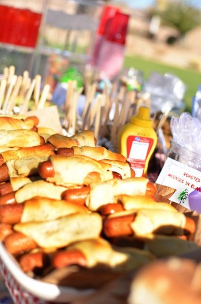 GOOD MENU IDEAS FOR A CAMPING PARTY