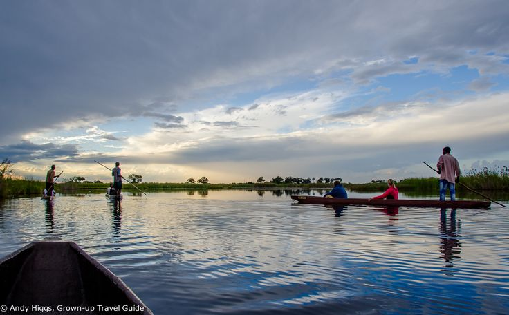An unforgettable Botswana safari: Part 1 - The Okavango Delta