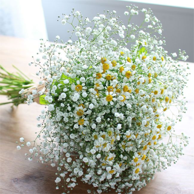 ミントが香るサマーブーケ。 ☆Baby's breath & mint, summer bouquet. # kusakanmuri