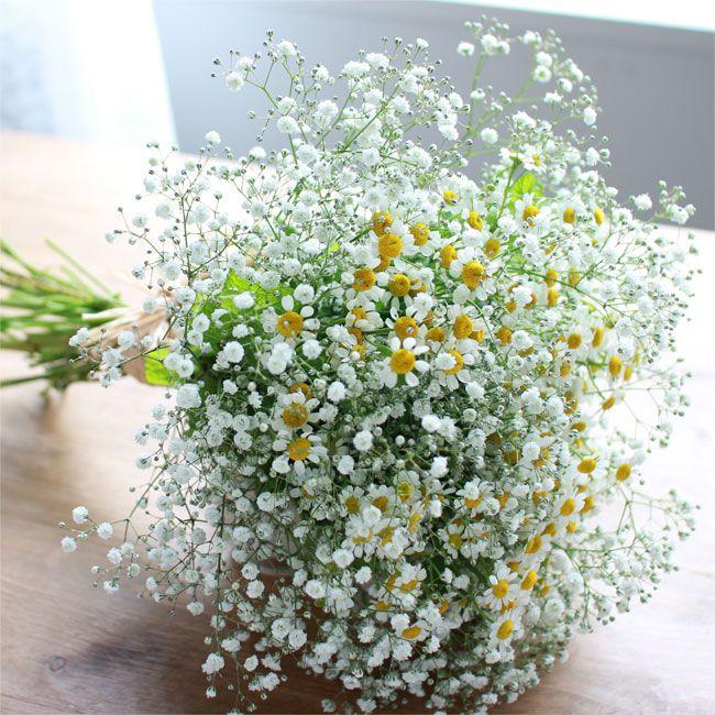 ★ミントが香るサマーブーケ たっぷりあしらったかすみ草がやさしく揺れる、夏にぴったりのブーケ。 ミントのさわやかな香りが、心も体も解きほぐしてくれます。6,000円(税別)# kusakanmuri