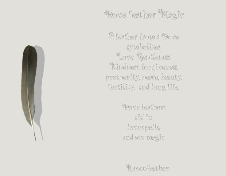 New Version of Dove Feather Magic *Please check your local and federal guidelines for feather collection and possession!*
