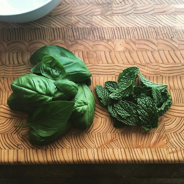 Fresh Basil and Mint from my herb garden! What am I up to this time? #SummerDishes