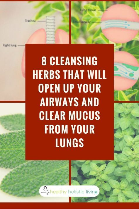 8 Cleansing Herbs That Will Open Up Your Airways And Clear Mucus