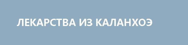 ЛЕКАРСТВА ИЗ КАЛАНХОЭ http://pyhtaru.blogspot.com/2017/03/blog-post_119.html  Лекарства из каланхоэ!  Каланхоэ очень широко применяется не только в народной, но и в профессиональной медицине. Потратив немного времени и сил, вы вполне можете приготовить подобные аптечным препараты, которые по своим качествам не уступят даже самым разрекламированным и дорогим.  Читайте еще: ================================== ЛИЦО КАК У МЛАДЕНЦА http://pyhtaru.blogspot.ru/2017/03/blog-post_33.html…