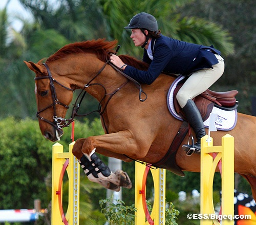 SOLD:Max or IMAX 24,000 great eventer I have had him since he was a foal he is 7 and counting and has no sound issues