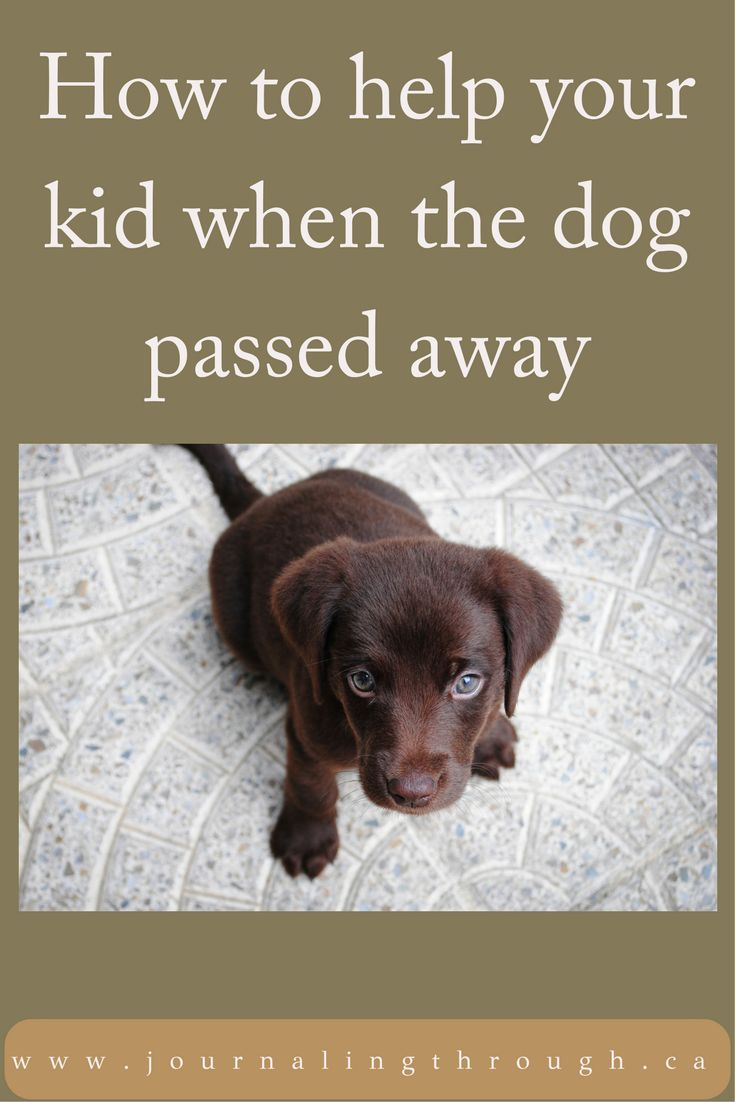 Helping Children Deal With the Loss of a Pet  #parenting #journaling #children #raisingkids #mentalhealth #loss #grief #pet #smartparenting