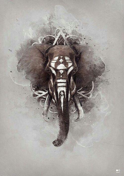 elephant, art, and animal image