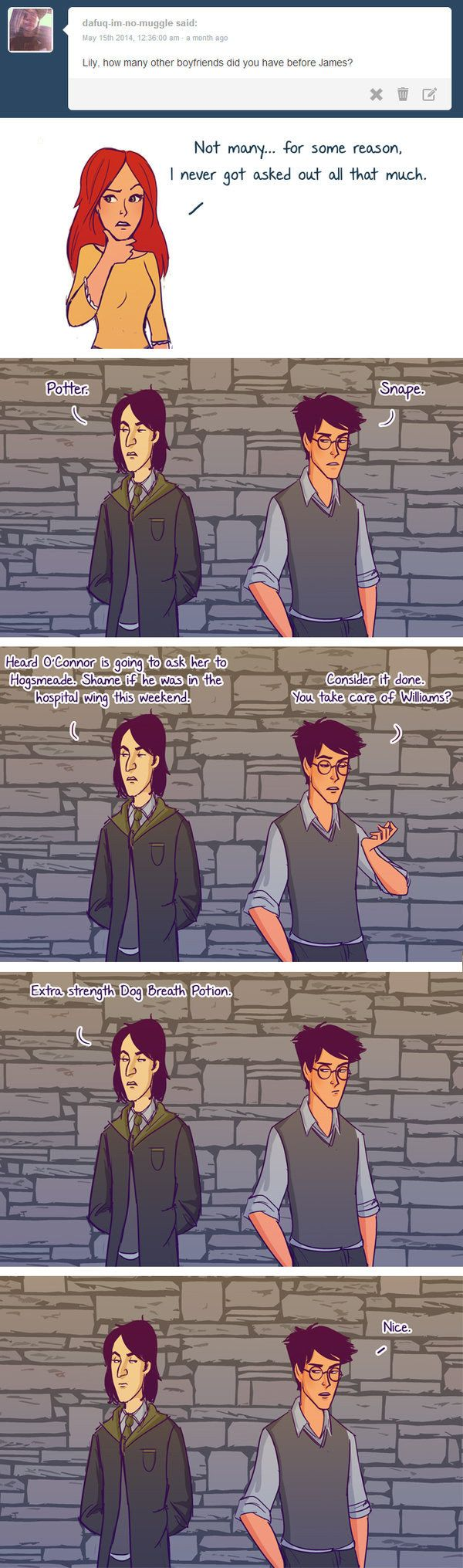 "But there's also this important revelation that James and Severus might have been unlikely allies. | These Hilarious ""Harry Potter"" Comics Ask James And Lily Potter Questions"
