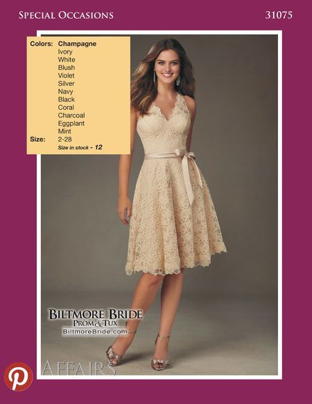 Special Occasions 31073