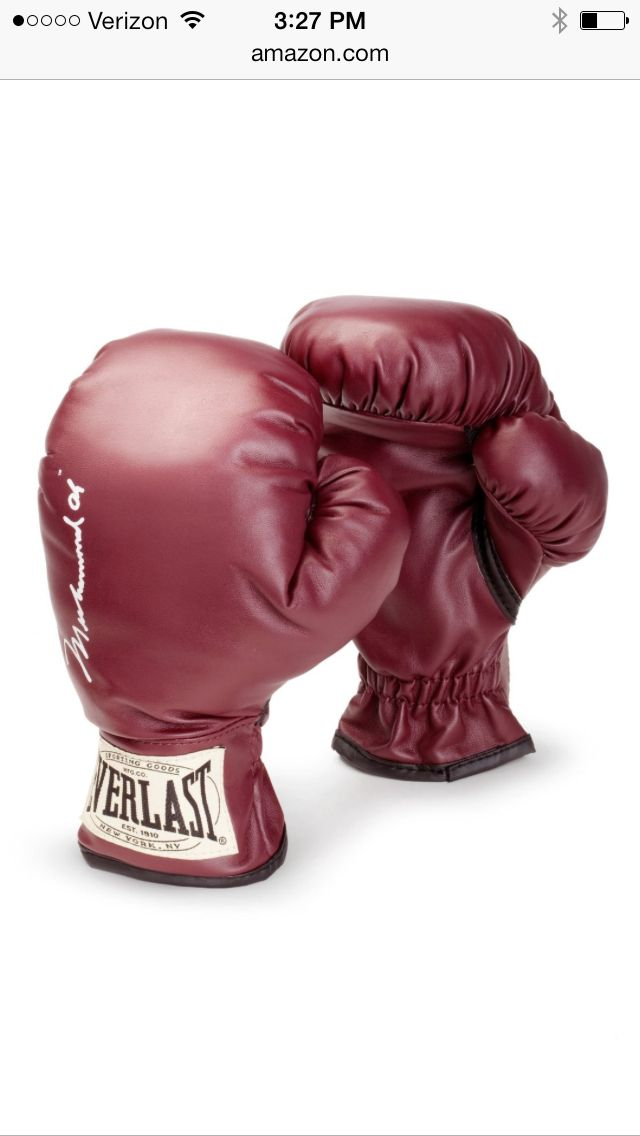 Everlast youth boxing gloves - so cute!!