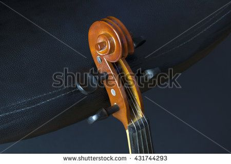 Old and dusty violin neck