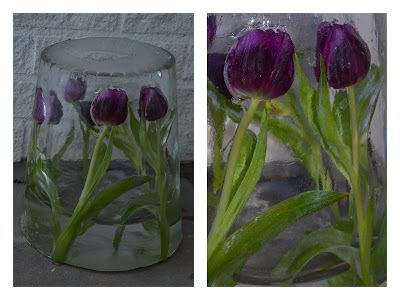 Made by jehul: Flowers in ice and room for a candle.