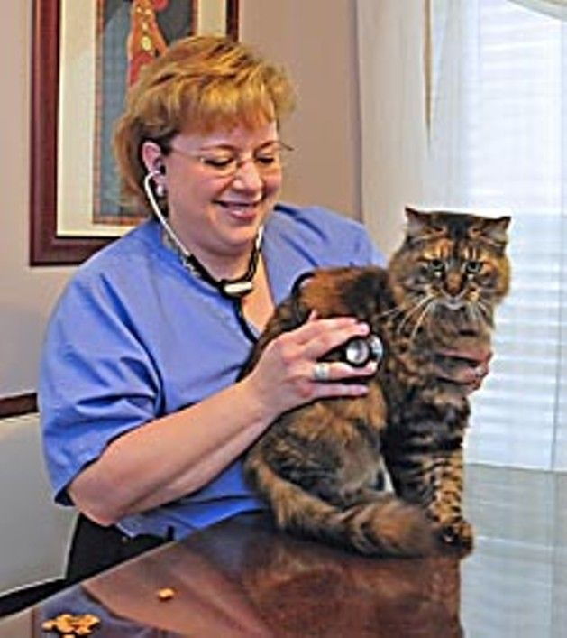 By going entirely mobile, one Gretna veterinarian is taking the 'waiting' out of the waiting room