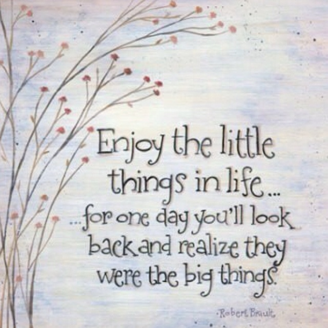 Quotes About Enjoying Life: Enjoy The Little Things In Life....