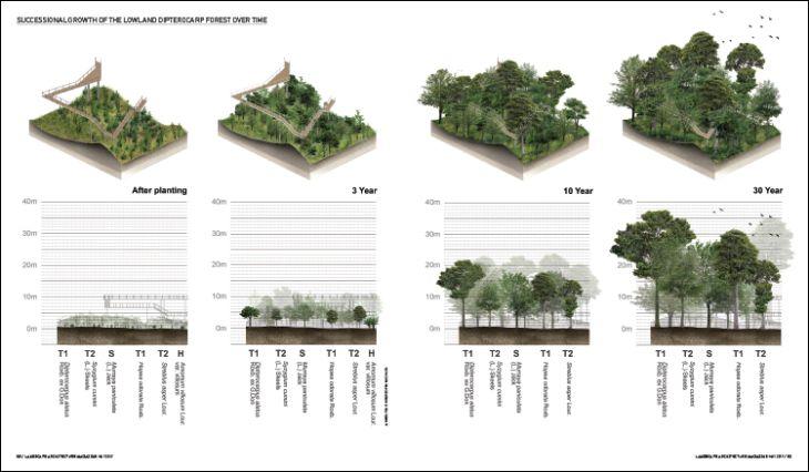 CONTROL OF THE CANOPY | Landscape Architecture Magazine