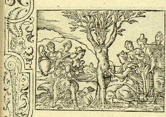 Les métamorphoses d'Ovide : Myrrha