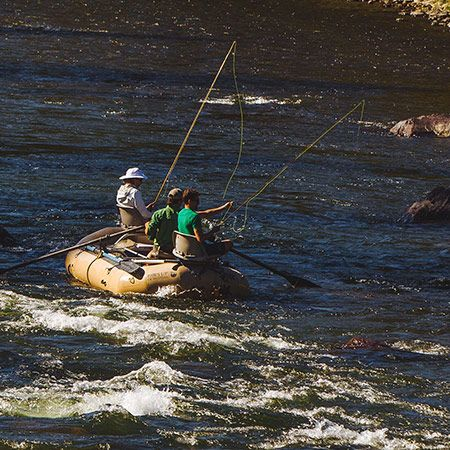 19 best montana fly fishing images on pinterest fishing for Fly fishing vacation montana