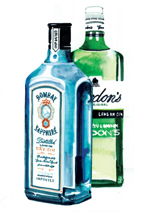 Gin Bottle Illustration by Holly Wales