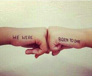 We were born to die.