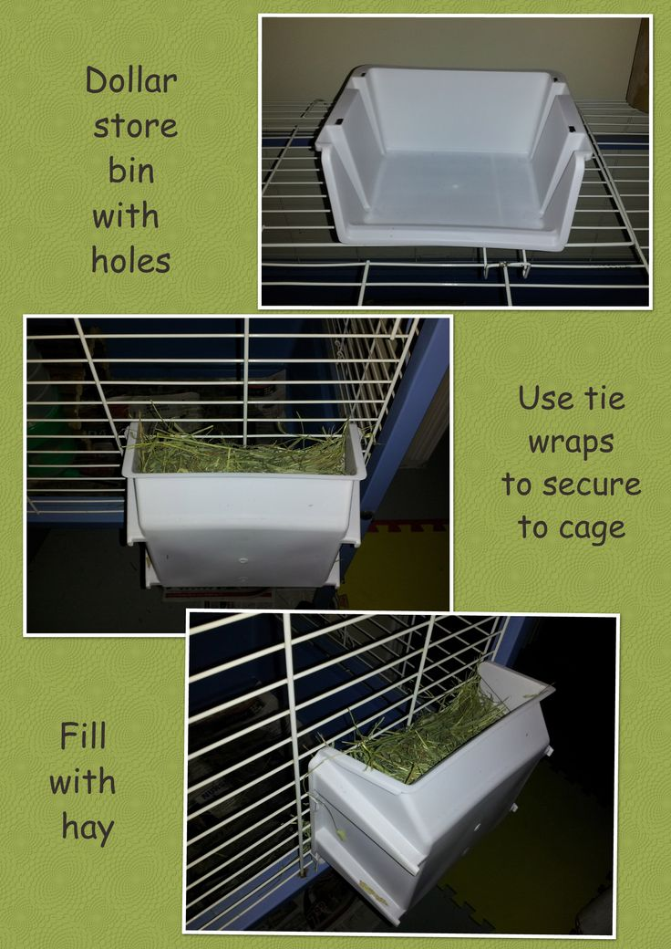 Create a cheap hay rack for your guinea pig or rabbit. It keeps hay from falling out of the back and you can fill it from outside of the cage.