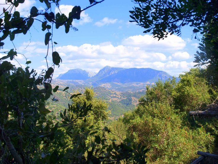 percorso_su_tempiesu_orune_panorama
