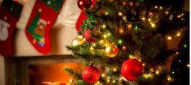 Heb je geen zin of plek om dit jaar een grote boom in huis te zetten? En laat je die kunstboom liever op zolder liggen? Dan heeft Romeo dé tip voor je!