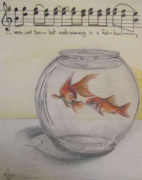 "Pink Floyd ""Were just two lost souls swimming in a fish bowl""...."