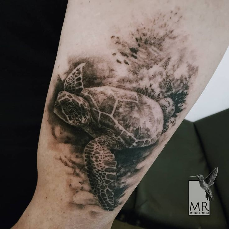 raponemarcoSea turtle - realistic black and grey tattoo on arm. Special thanks: @alessiolalatattoo  Done with: @kwadron @cheyenne_tattooequipment  #turtletattoo #seaturtletattoo #seaturtlelove #tattooturtle #turtlelover #seatattoos #realistictattoo #realistictattoos #realisticblackandgreytattoo #tattoorealistic #tattoogreece #tattooathens #greecetattooartist #greecetattoos #tatuaggiorealistico #kwadroncartridges #bestrealistictattoo